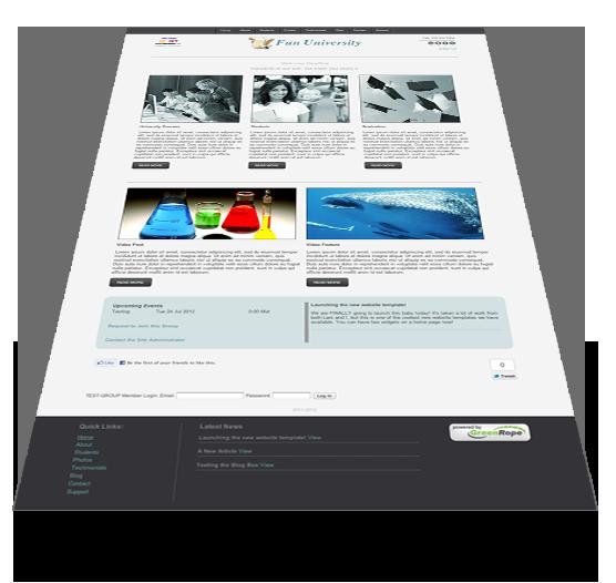 screen website